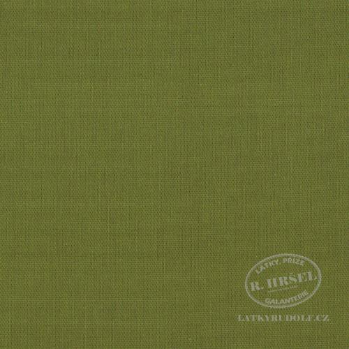 Látka Bavlněný kanvas zelený 125123